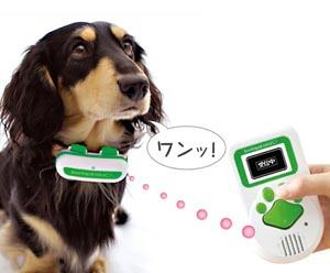 talkingdog