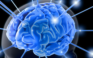 brain-blue-neurons Enzyme Found to Control Memory Retention in the Brain