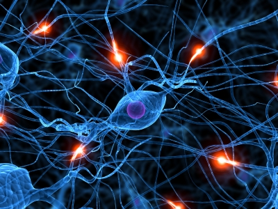 neurons Microwave Photons in Cellphones Could Damage Human Tissue