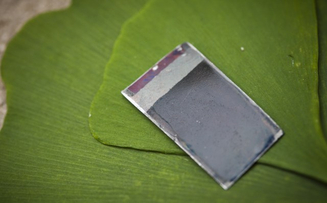 mit-leaf MIT's Artificial Leaf Could Make Pure Water