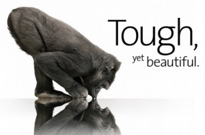 gorilla-glass-550x363-300x197 Gorilla Glass 2 at CES, Coming to iPhone 5?