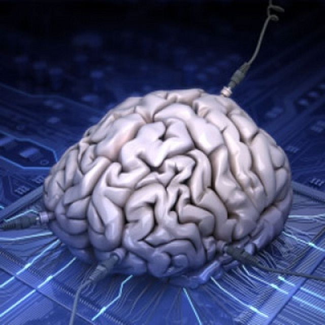 synthetic-brain Synthetic Natural Brain Could Be A Reality Soon