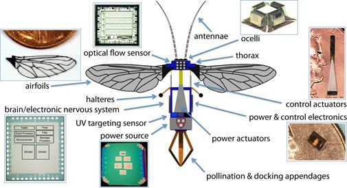 harvard-robobees-1 Robotic Bees Capable of Pollination?