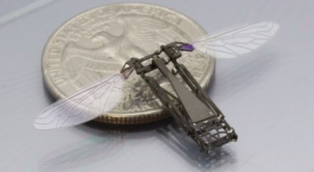 harvard-robobees-2-640x352 Robotic Bees Capable of Pollination?