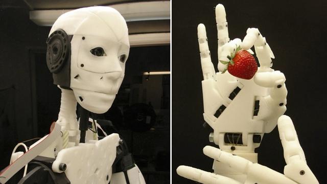 130122-robot Build Yourself a Robot with a 3D Printer (Video)