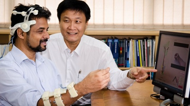 synphne SynPhNe Stroke Rehabilitation System