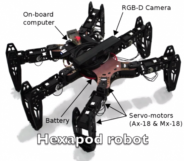 clever-hexapod This Hexapod Doesn't Let A Little Thing Like Missing A Leg Get in its Way (Video)