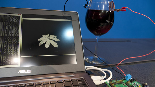 intel-wine-processor Intel's Wine Powered Processor And Other Innovations
