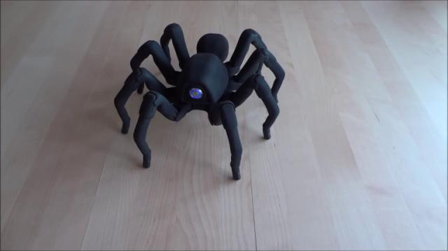 131114-spider