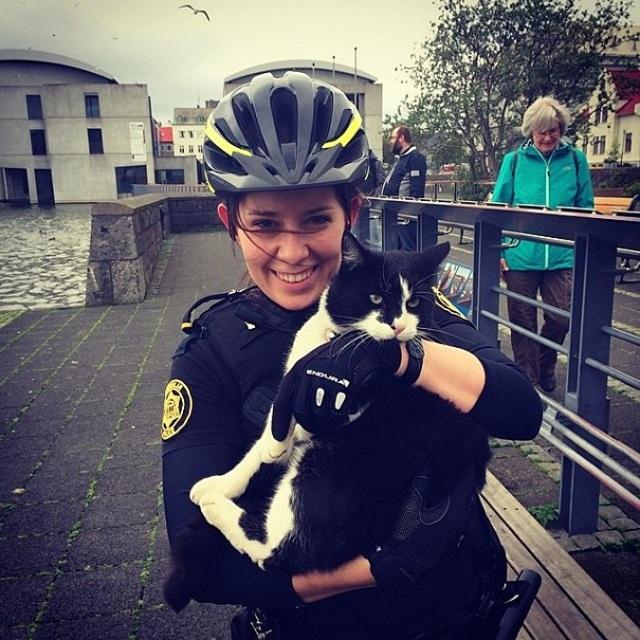 police-instagram-logreglan-reykjavik-iceland-23